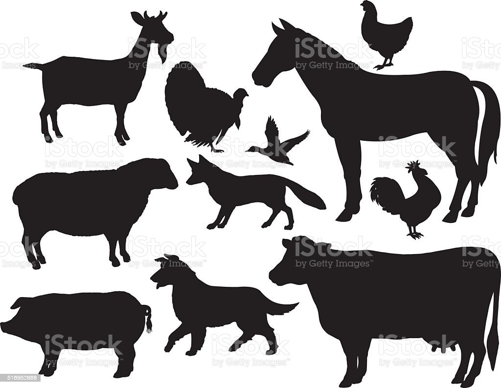 Farm Animals - Horse, Cow, Pig, Goat, Fox, Chicken, Rooster vector art illustration