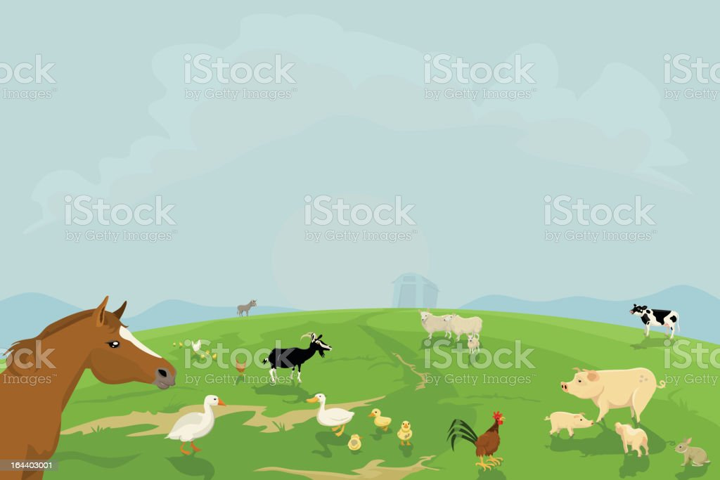 Farm Animals in a Field royalty-free stock vector art