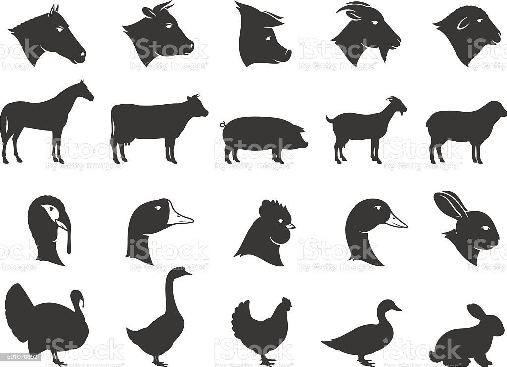 Farm Animals Silhouettes and Icons vector art illustration