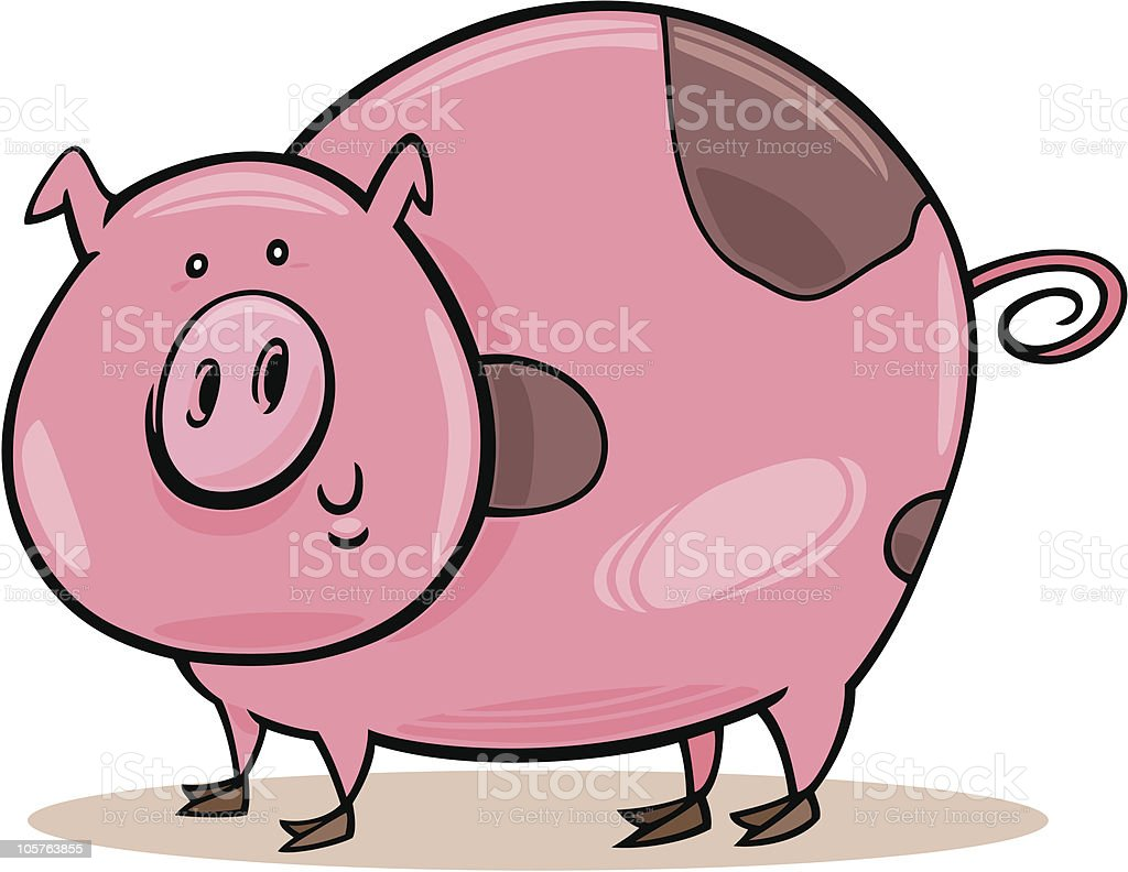 farm animals: spotted pig royalty-free stock vector art