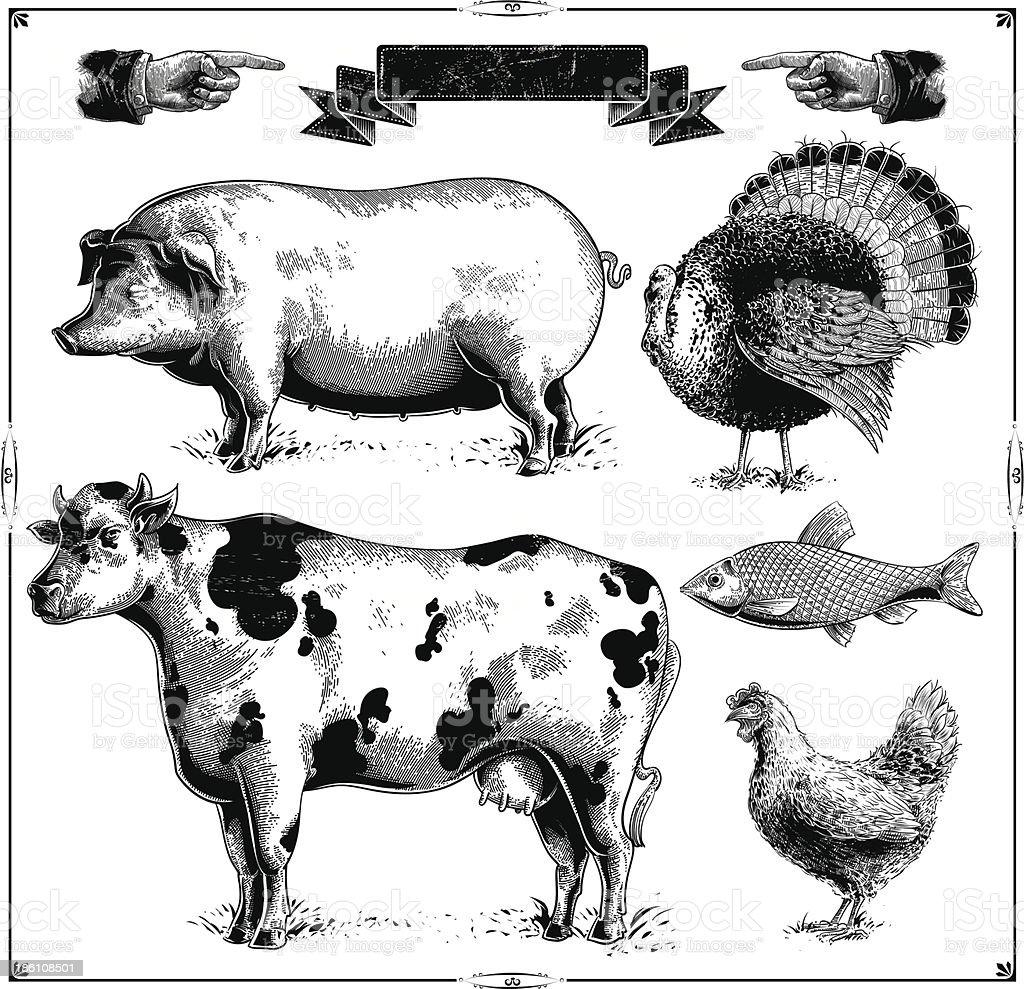 Farm Animals royalty-free stock vector art
