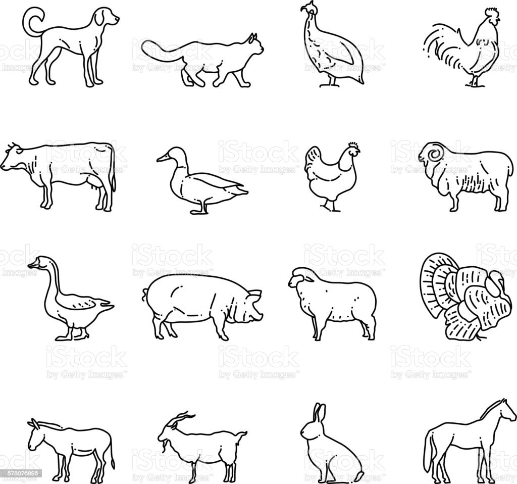 Line Drawing Of Domestic Animals : Farm animals vector thin line icons set outline cow pig