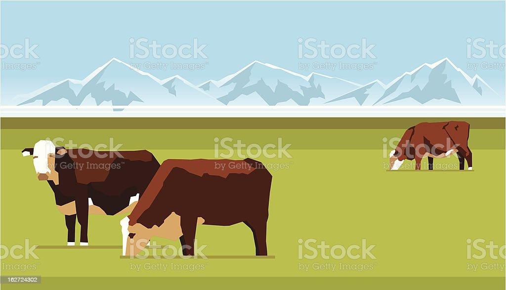Farm cows royalty-free stock vector art