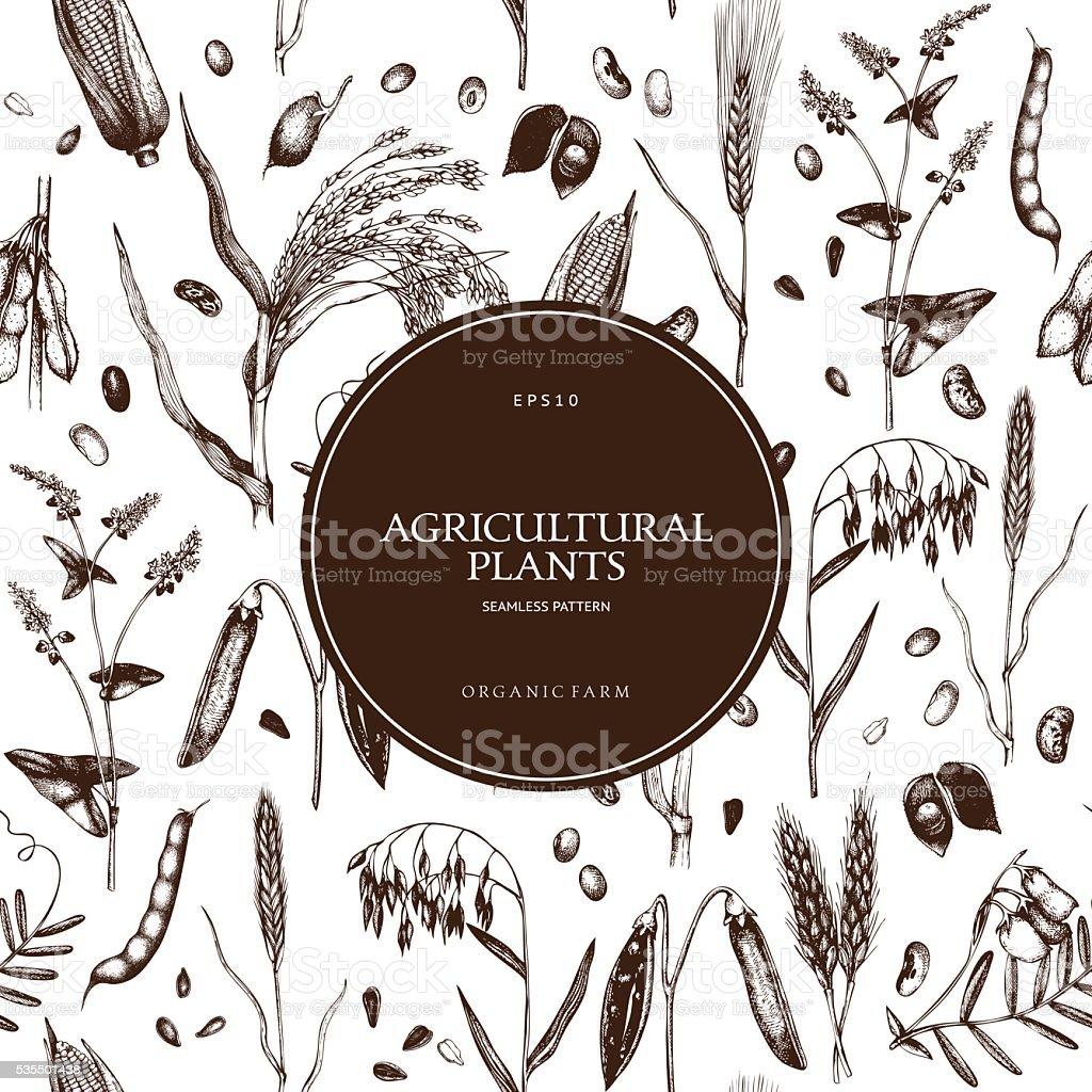 Farm fresh and organic plants background. vector art illustration