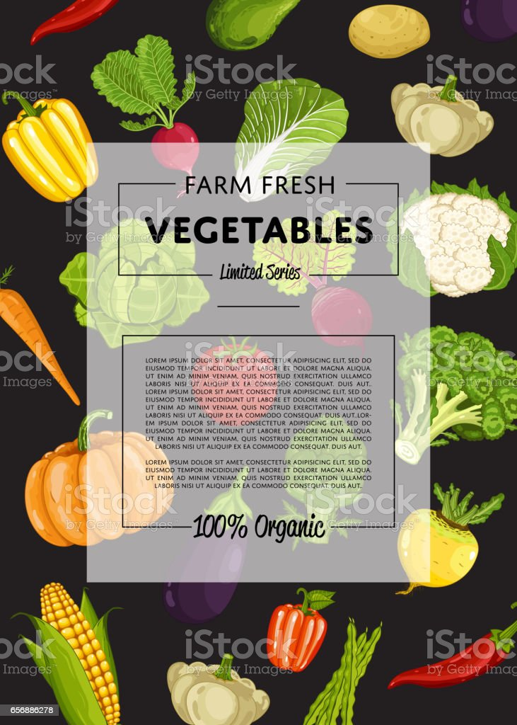 Farm fresh vegetable banner with natural product vector art illustration