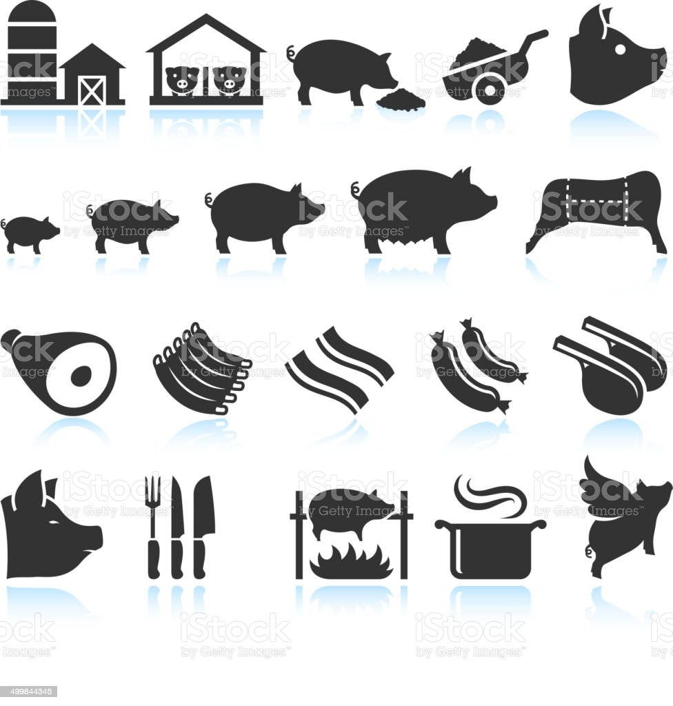 Farm Pig Live Cycle and Food Preparation Set vector art illustration