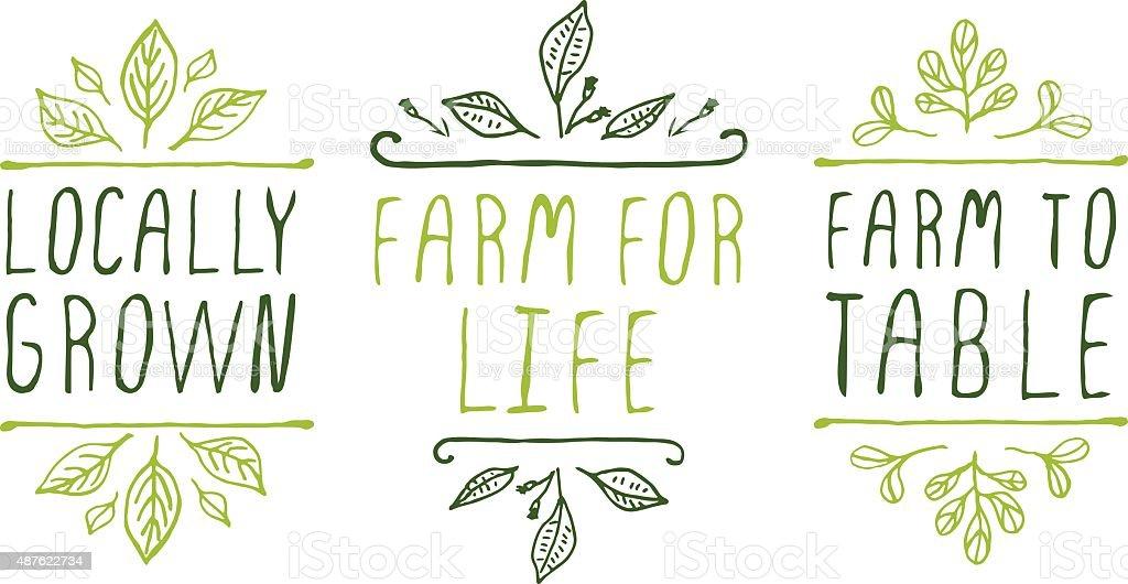 Farm product labels vector art illustration