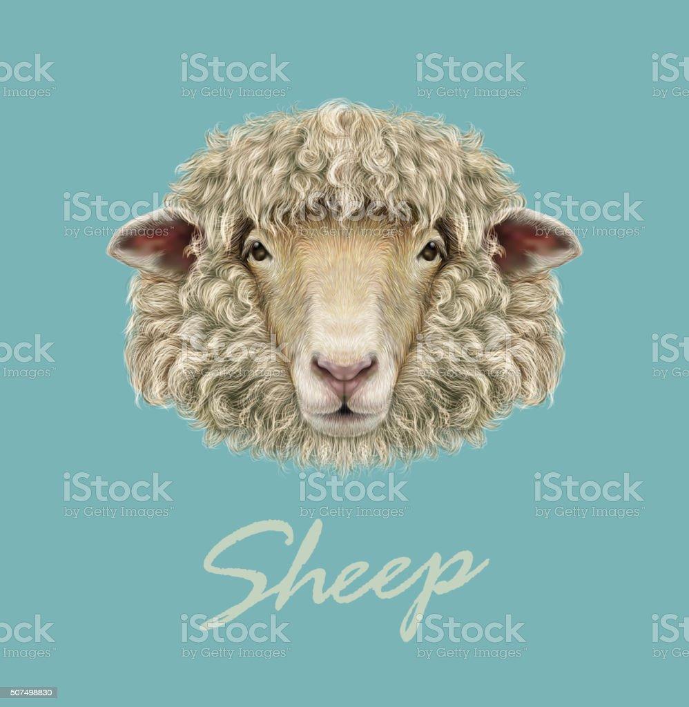 Farm Sheep Portrait. vector art illustration
