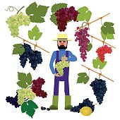 Farmer with grapes