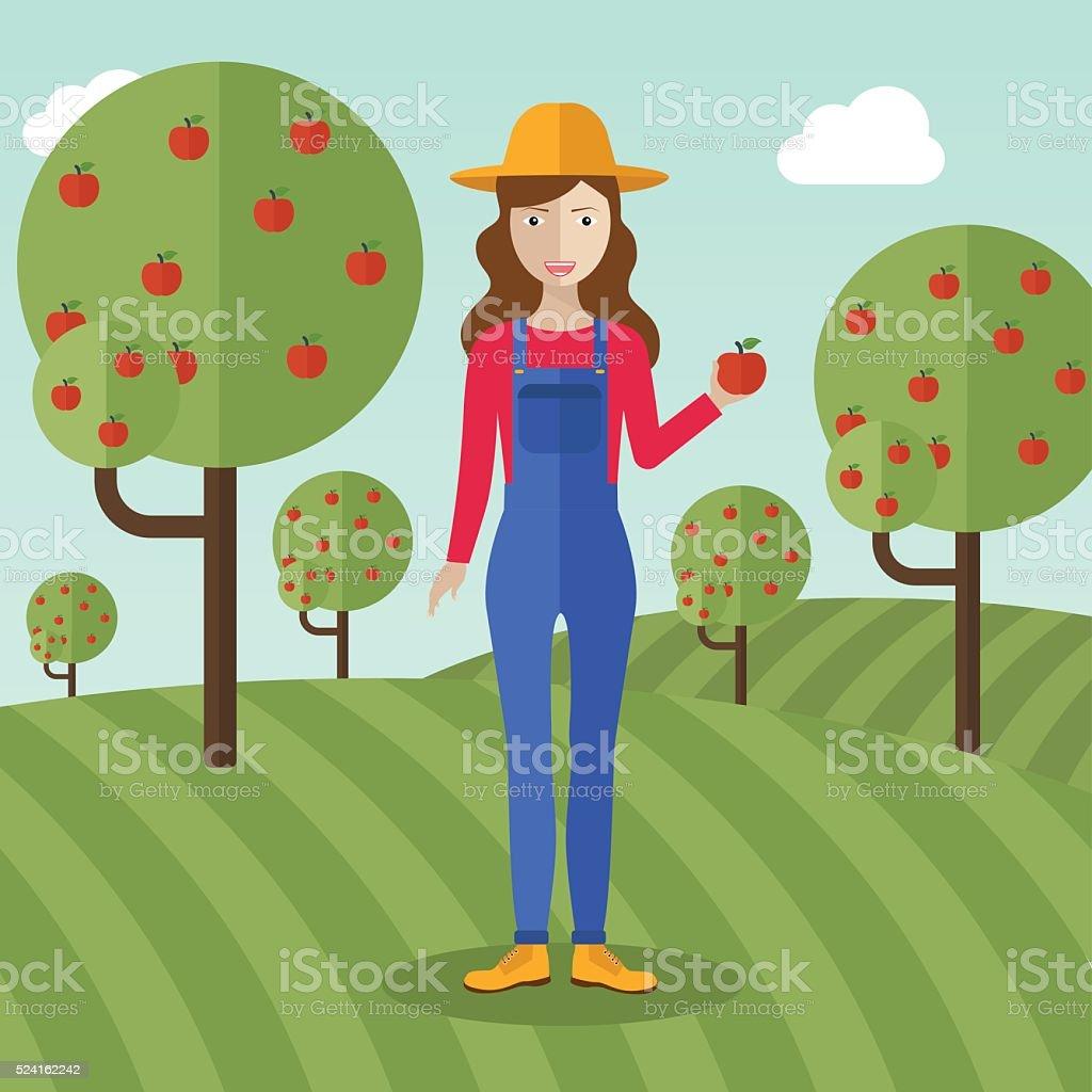Farmer woman  collecting apples. vector art illustration