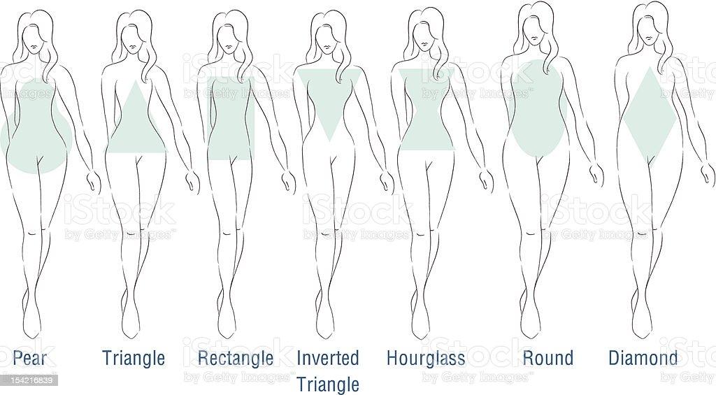 Fashion Body Types vector art illustration