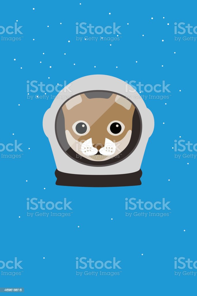 A cat wear spacesuit in the space, Fashion portrait of cat
