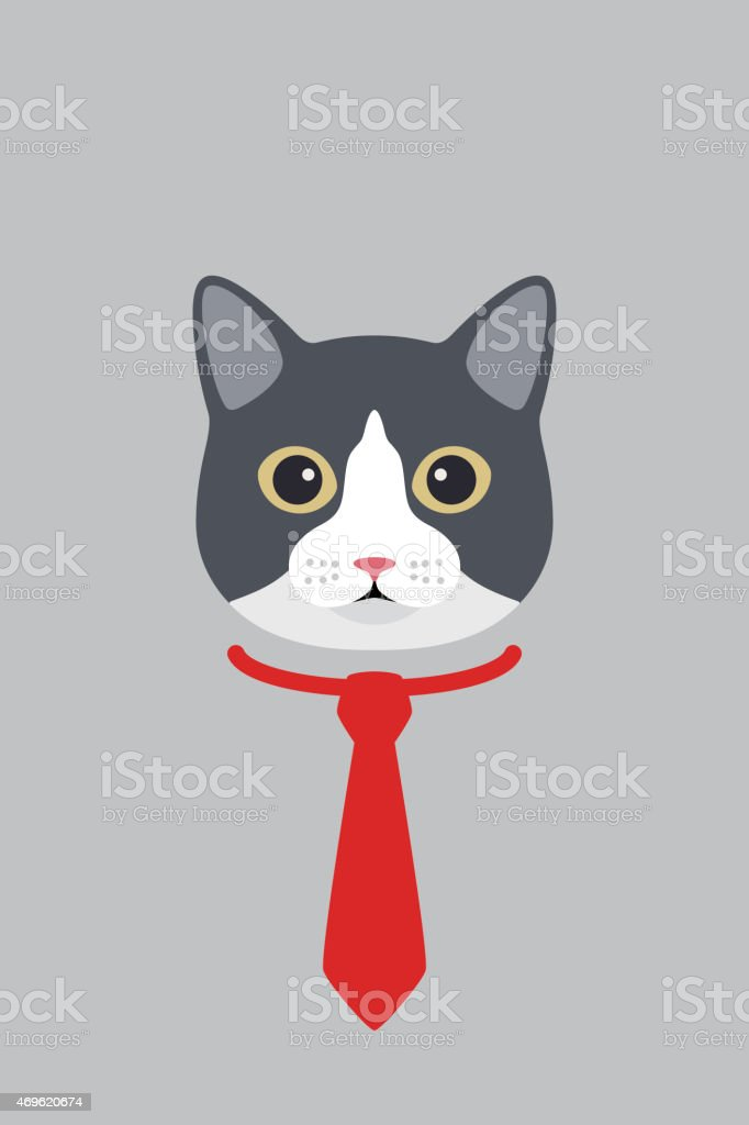 Fashion portrait of cat, cat gentlemen stock photo