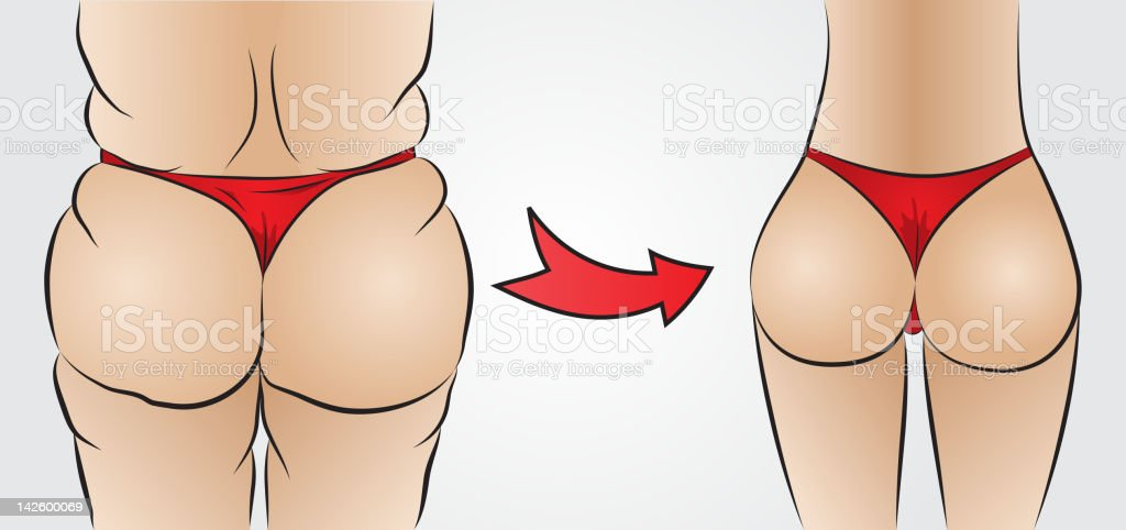 Fat and slim ass royalty-free stock vector art