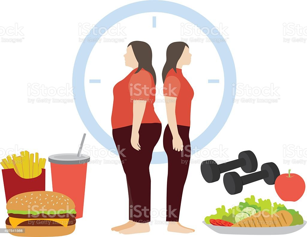fat and thin woman body vector art illustration