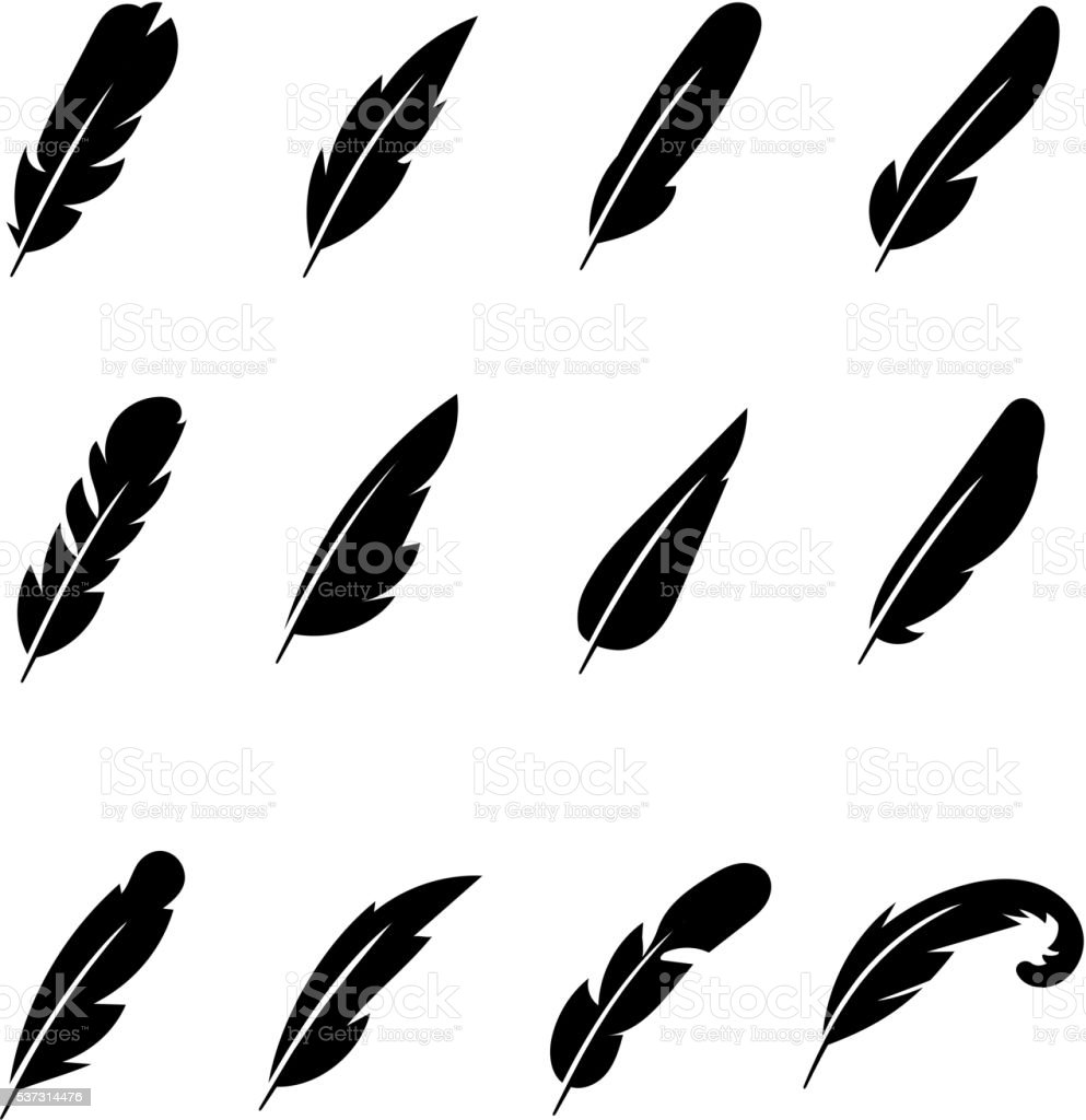 Feather black vector icons vector art illustration