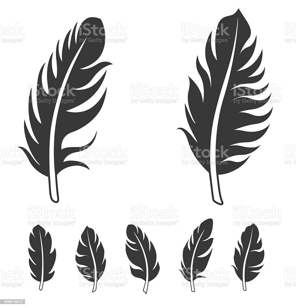Feather icon vector art illustration