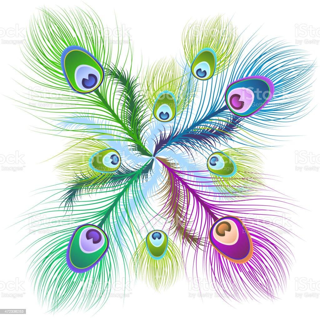 Feather Patterns vector art illustration