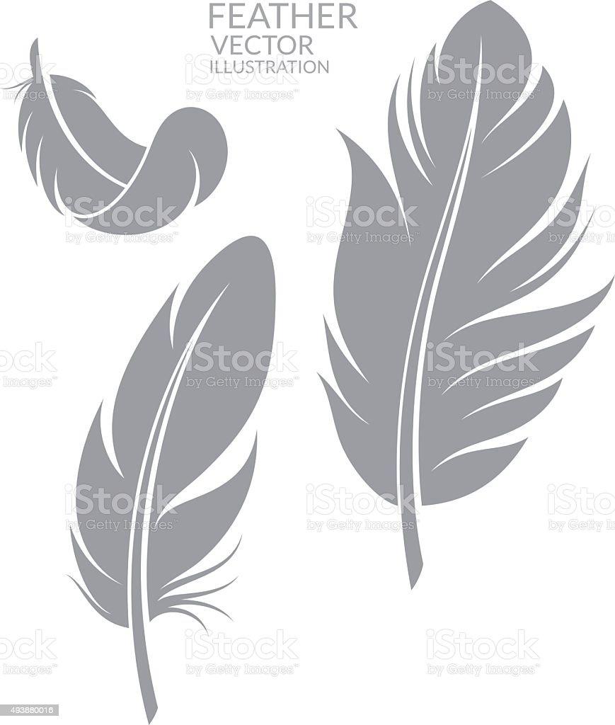 Feather. Set vector art illustration