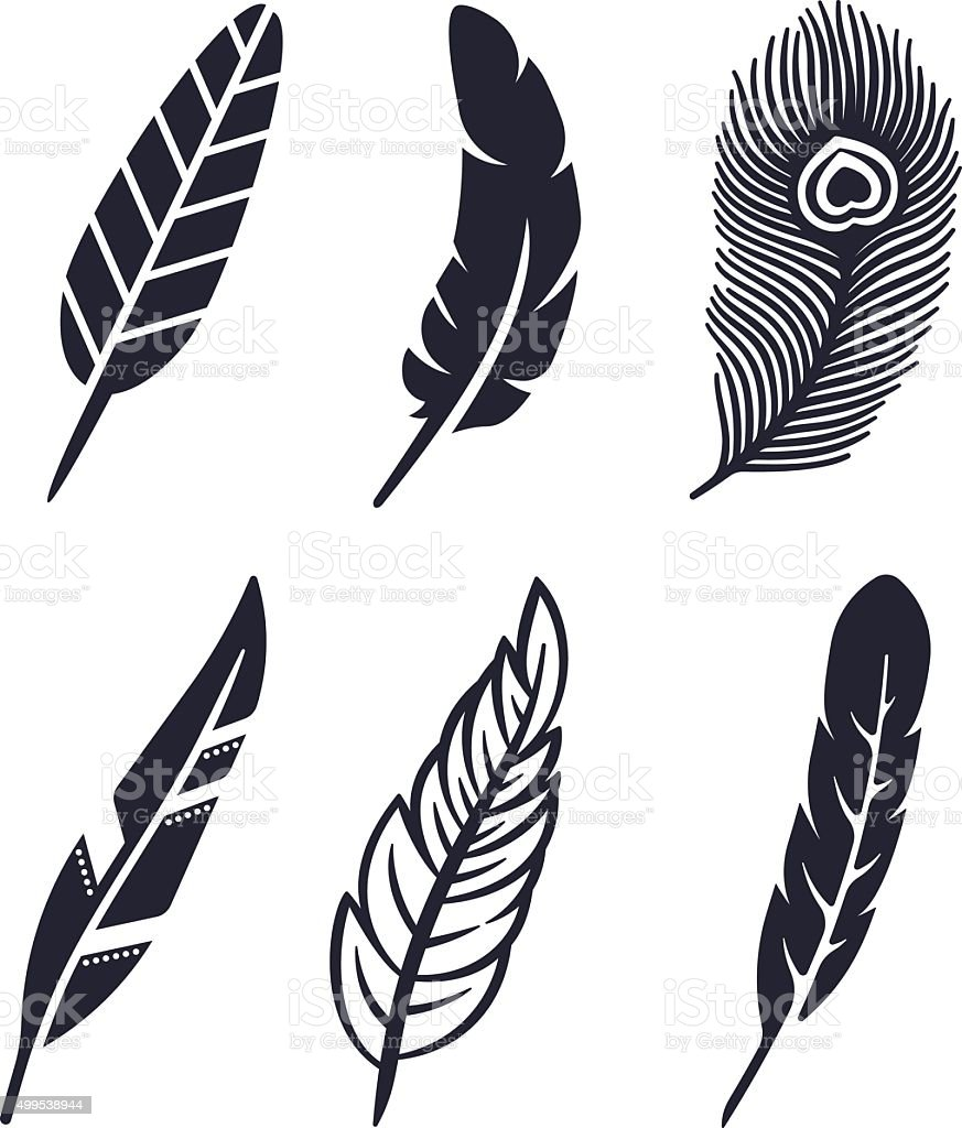 Feather Symbols vector art illustration