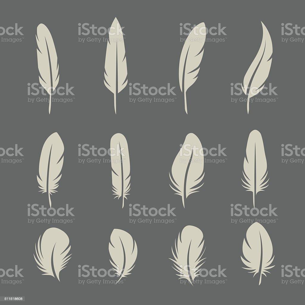 Feathers retro set vector art illustration