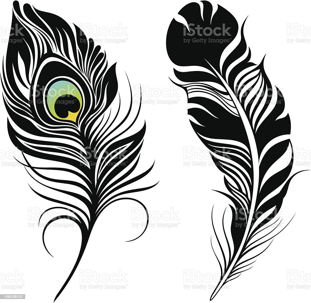 Перо жар птицы тату эскизы