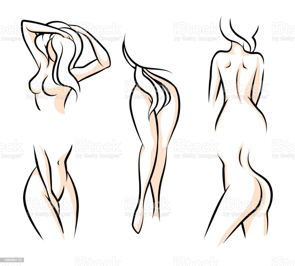 Female body parts vector art illustration