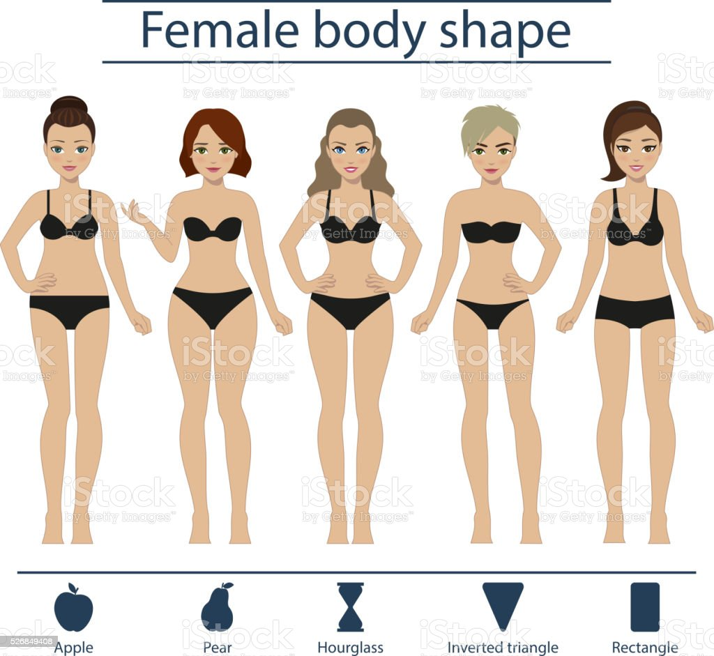 Female body shape set vector art illustration