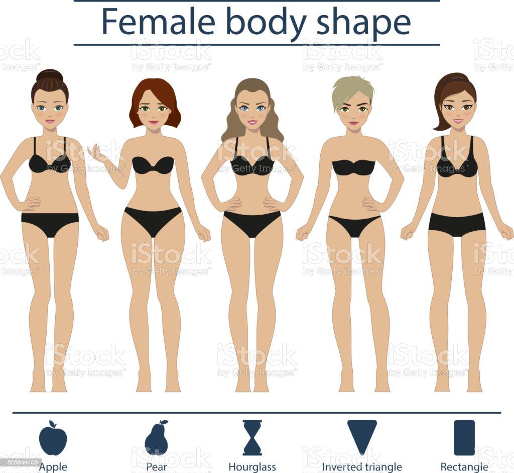 Female body shape set vector art illustration