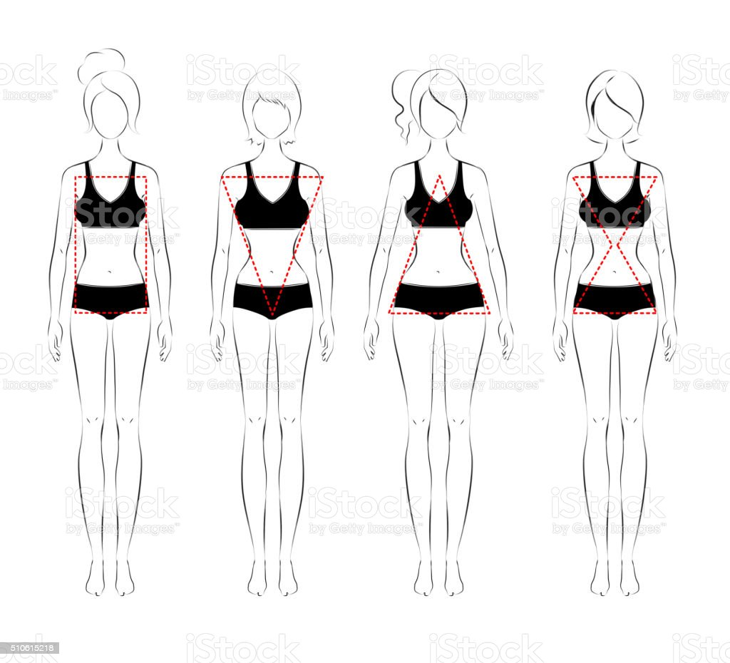 Female body types vector art illustration