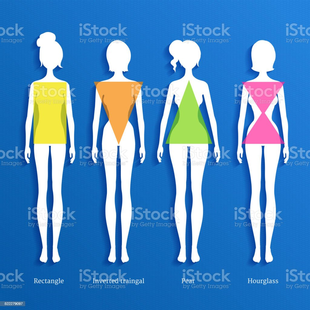 Female body types. vector art illustration