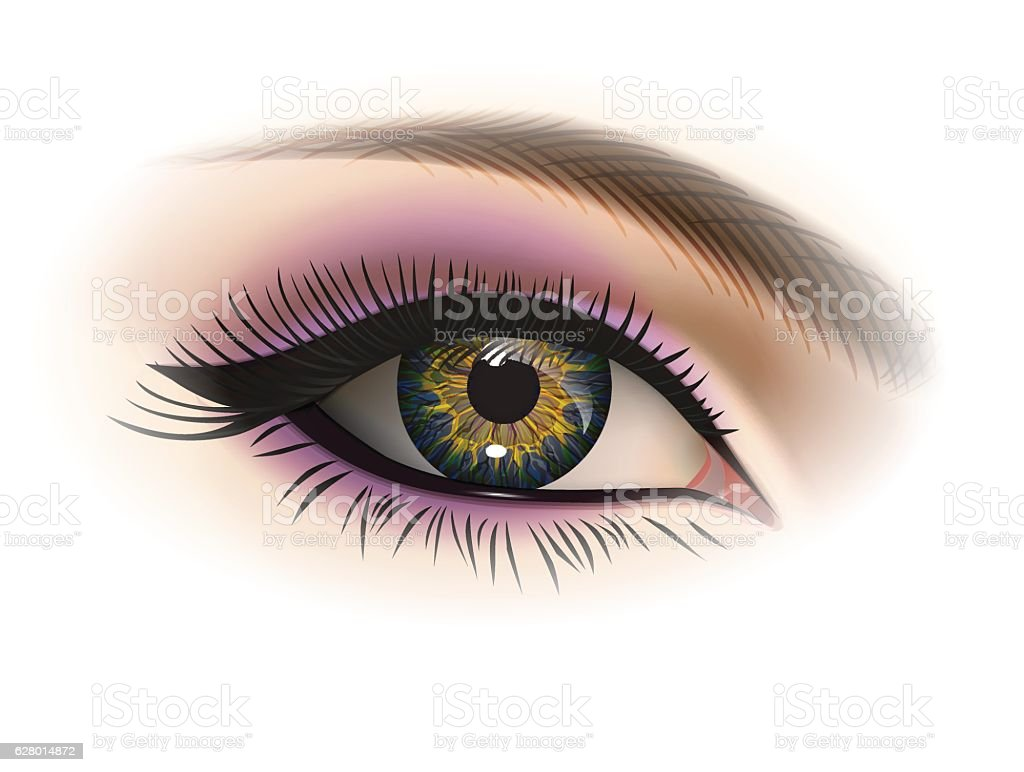 Female eye, vector vector art illustration