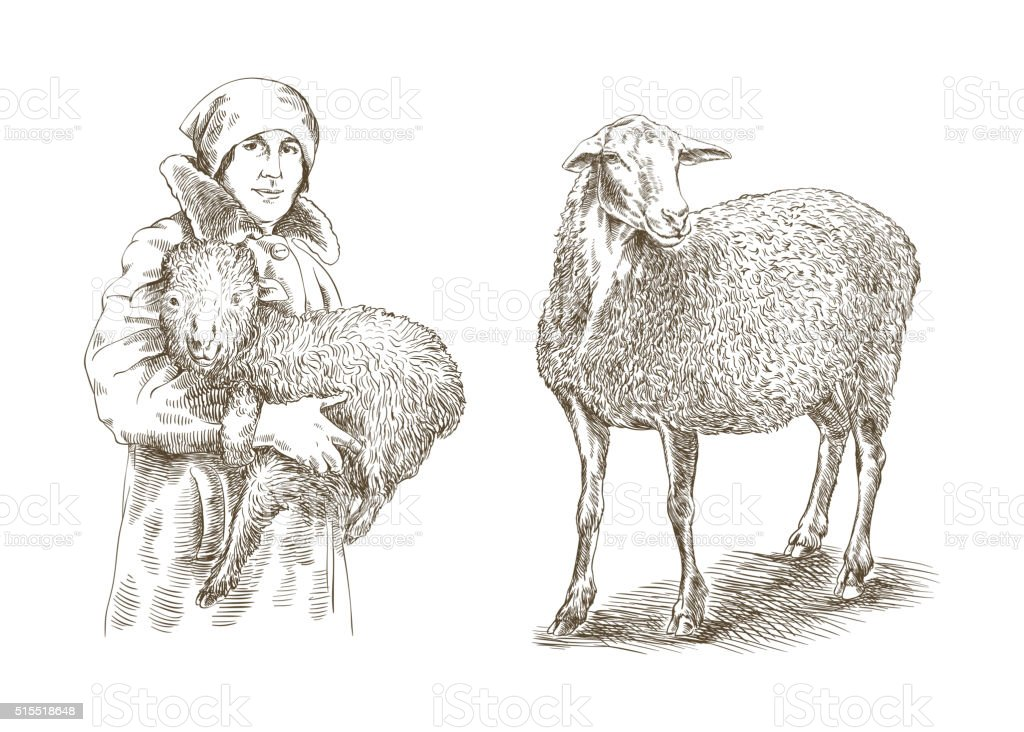 Female farmer holding a lamb in his hands vector art illustration