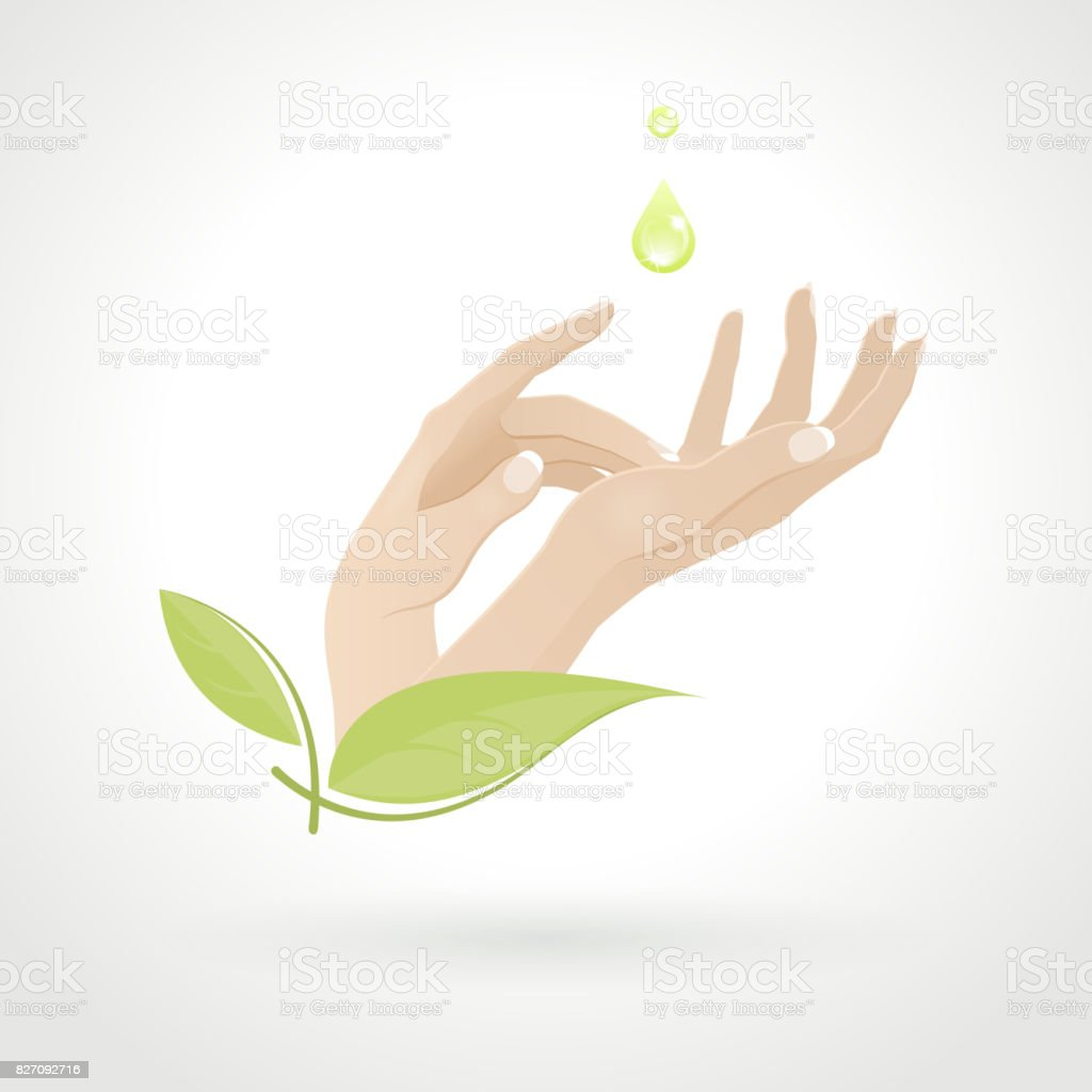 Female Hand Care with Herbs vector art illustration