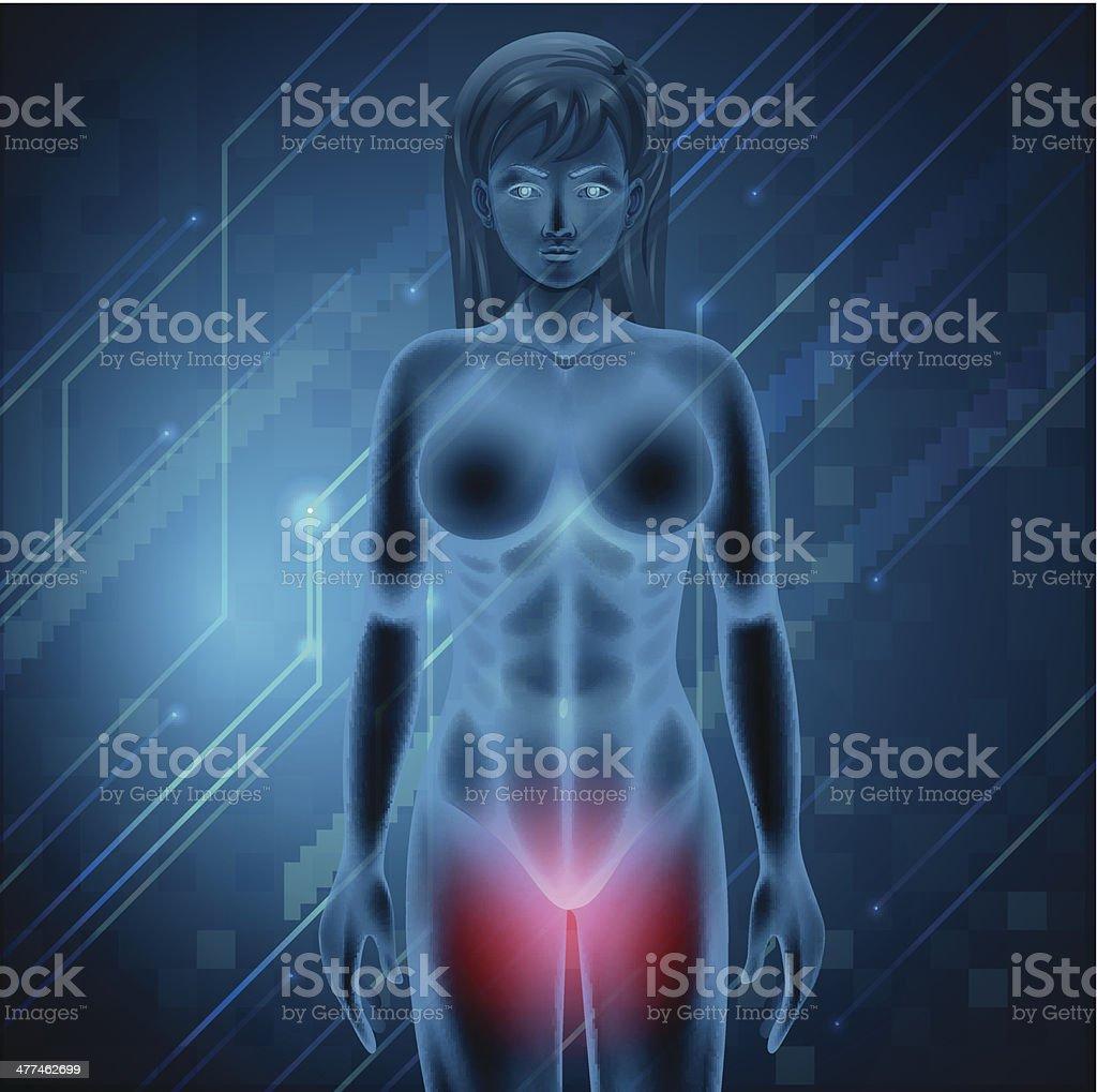 Female menstrual pain vector art illustration
