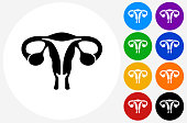 Female Reproductive System Icon on Flat Color Circle Buttons