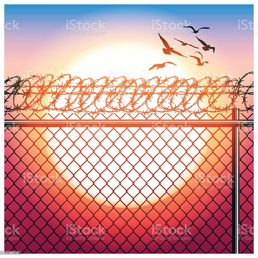 fence with barbed wire and birds vector art illustration
