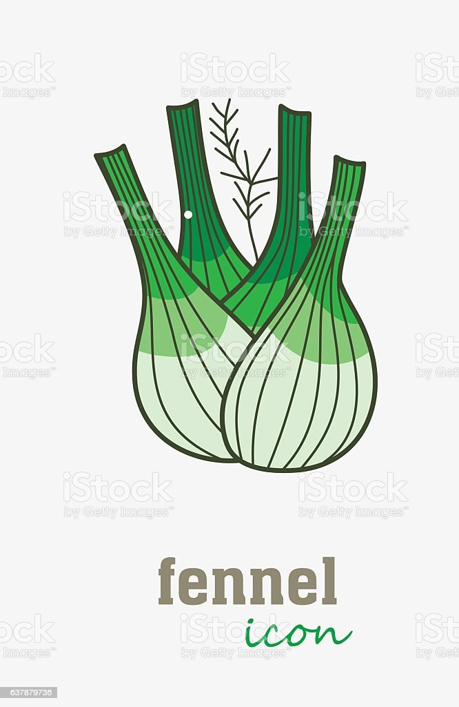 fennel vector icon. Vegetable green leaves vector art illustration