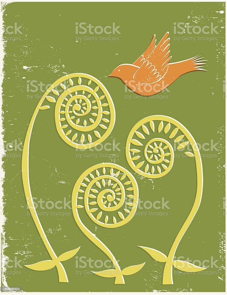 Fiddlehead ferns with bird vector art illustration