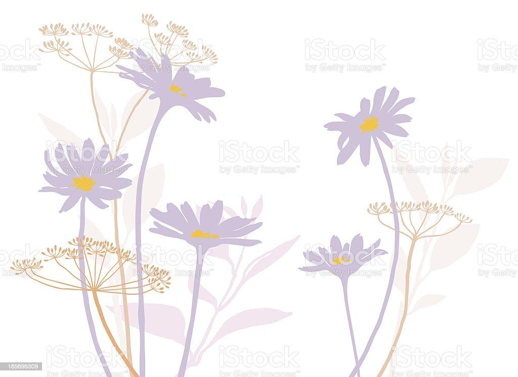 Field flowers vector art illustration
