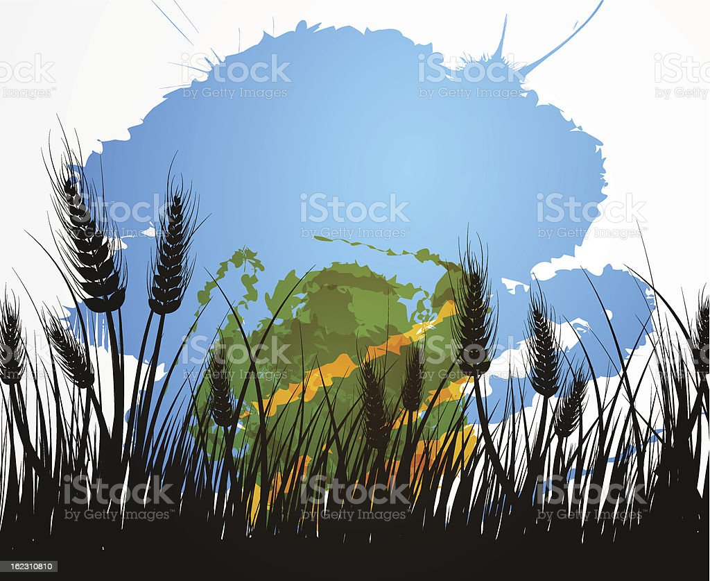 Field of wheat royalty-free stock vector art