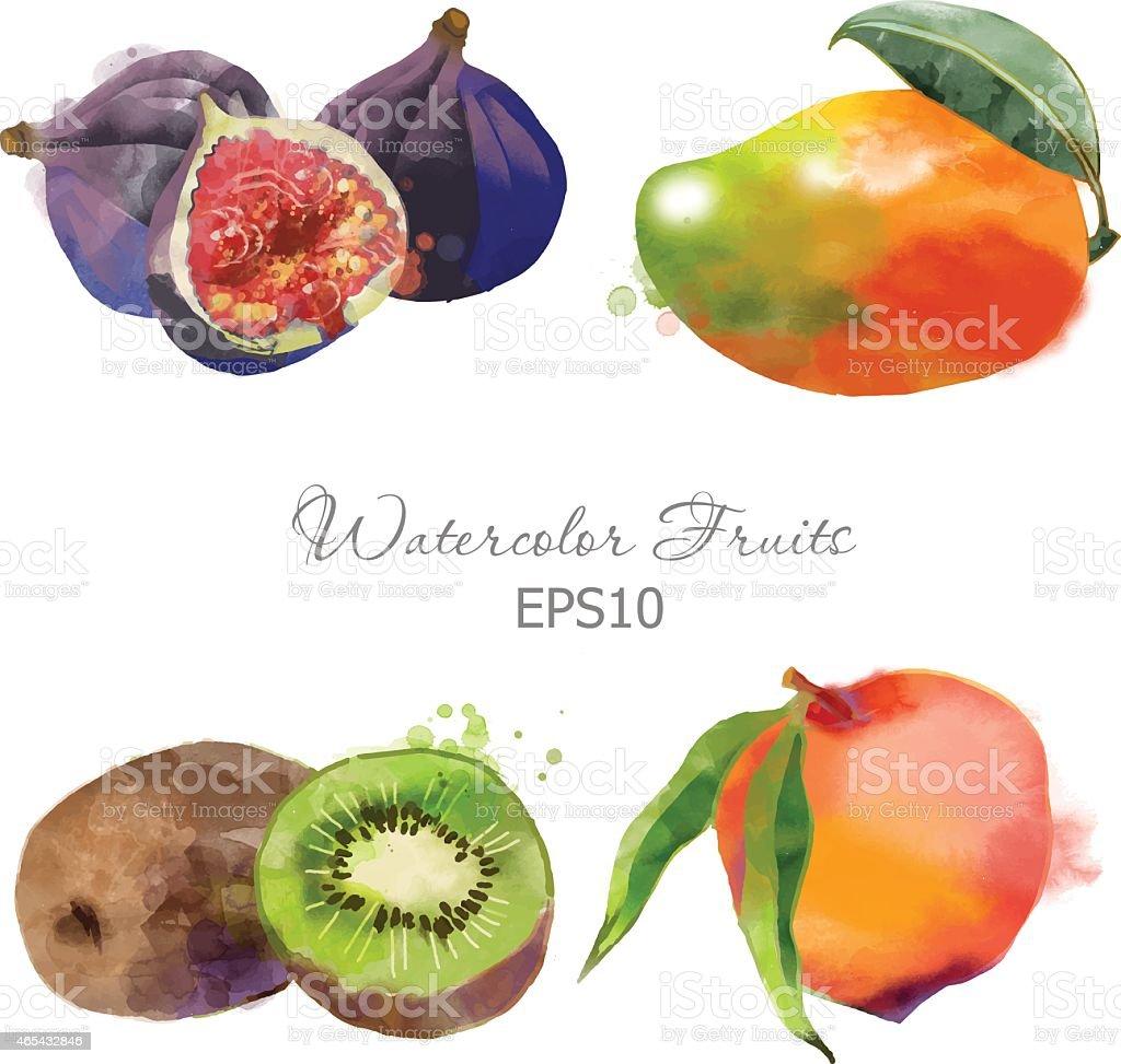 figs, mango, kiwi, peach vector art illustration