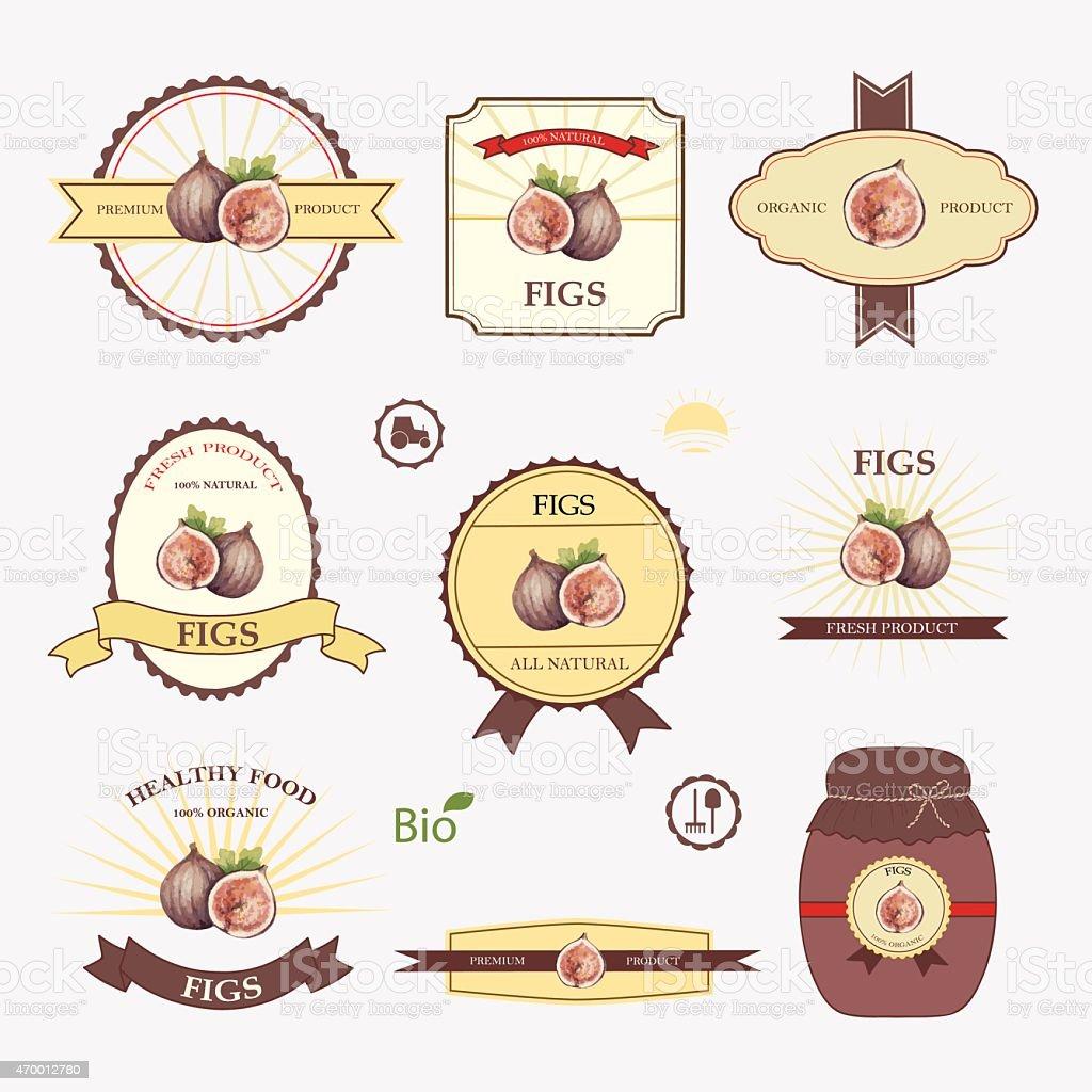 Figs, set of label design vector art illustration