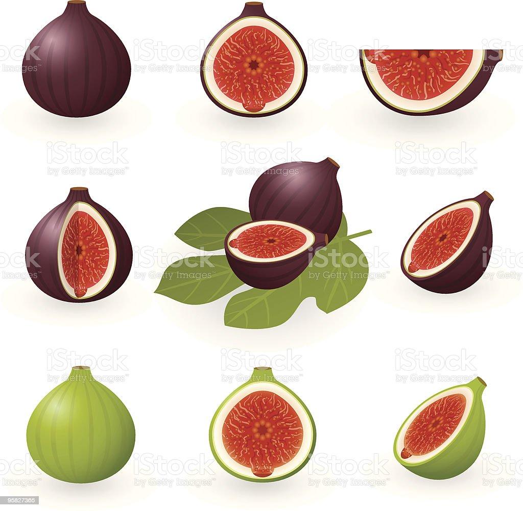Figs vector art illustration