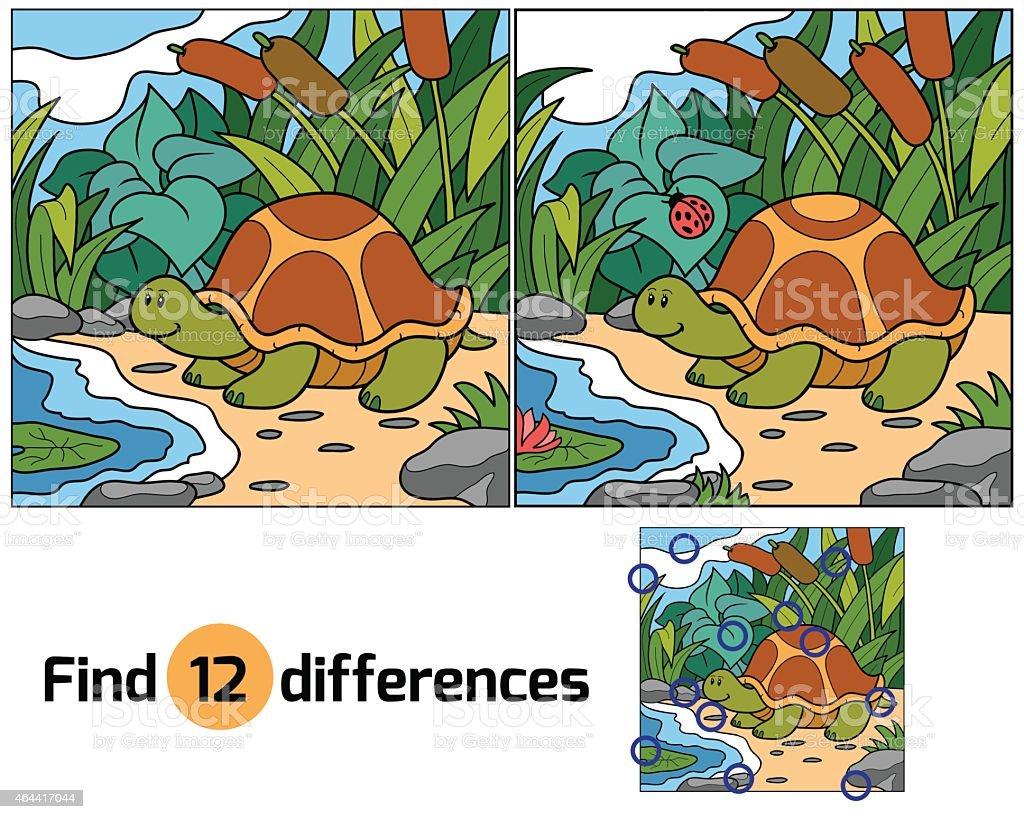 Find differences (turtle) vector art illustration