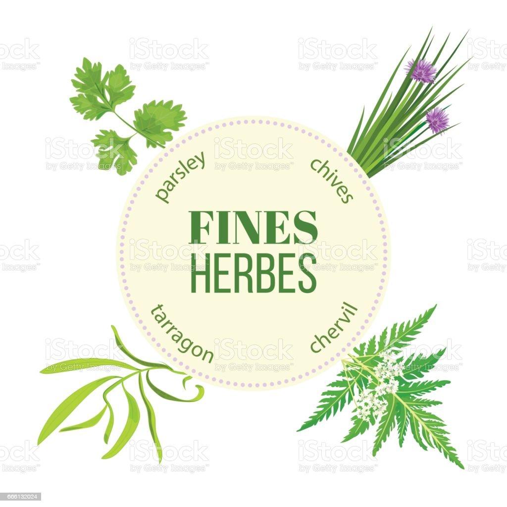 Fines herbes round emblem vector art illustration