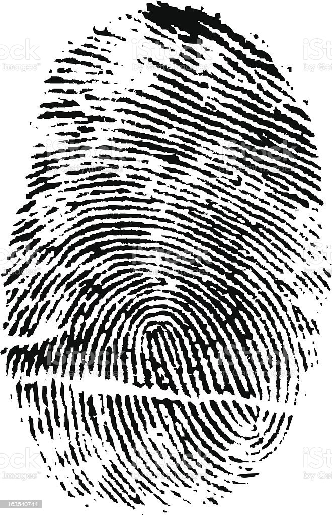 Fingerprint (vector) royalty-free stock vector art