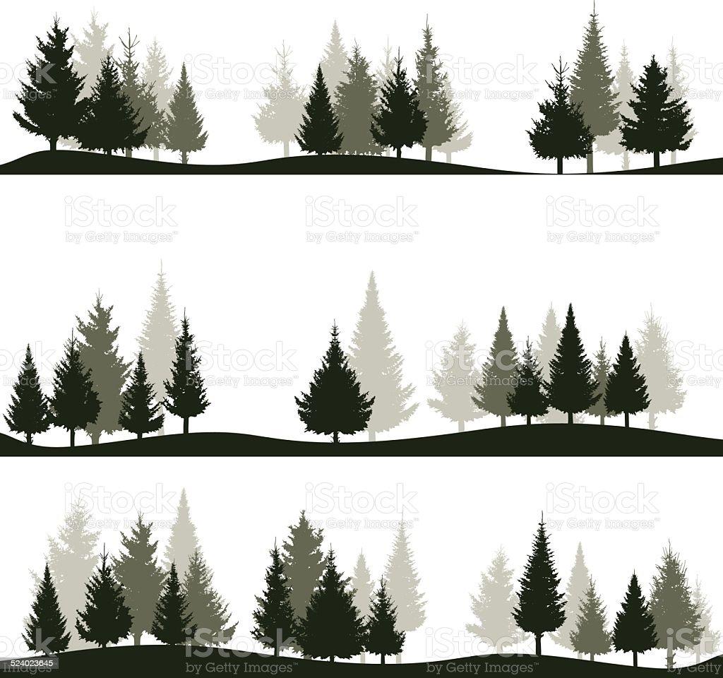 fir tree vector art illustration
