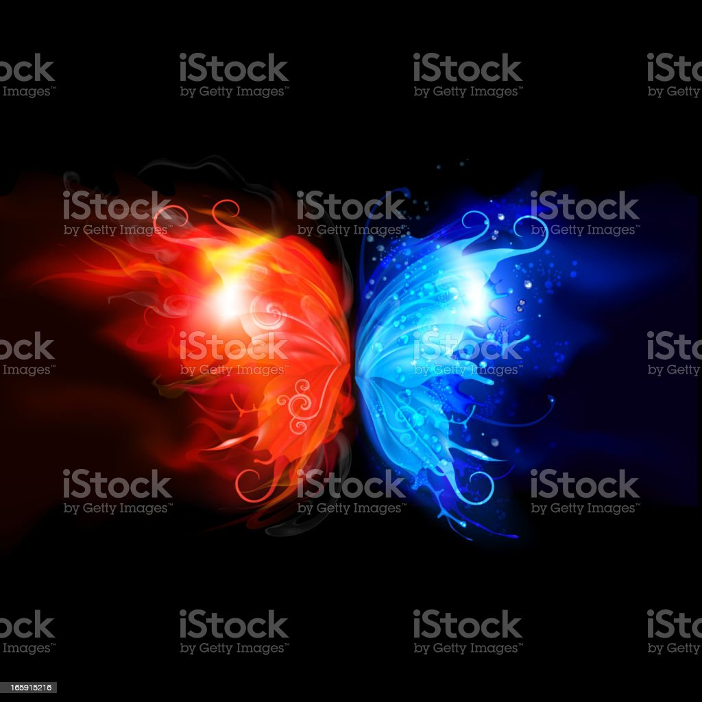 Fire and water butterfly concept vector art illustration