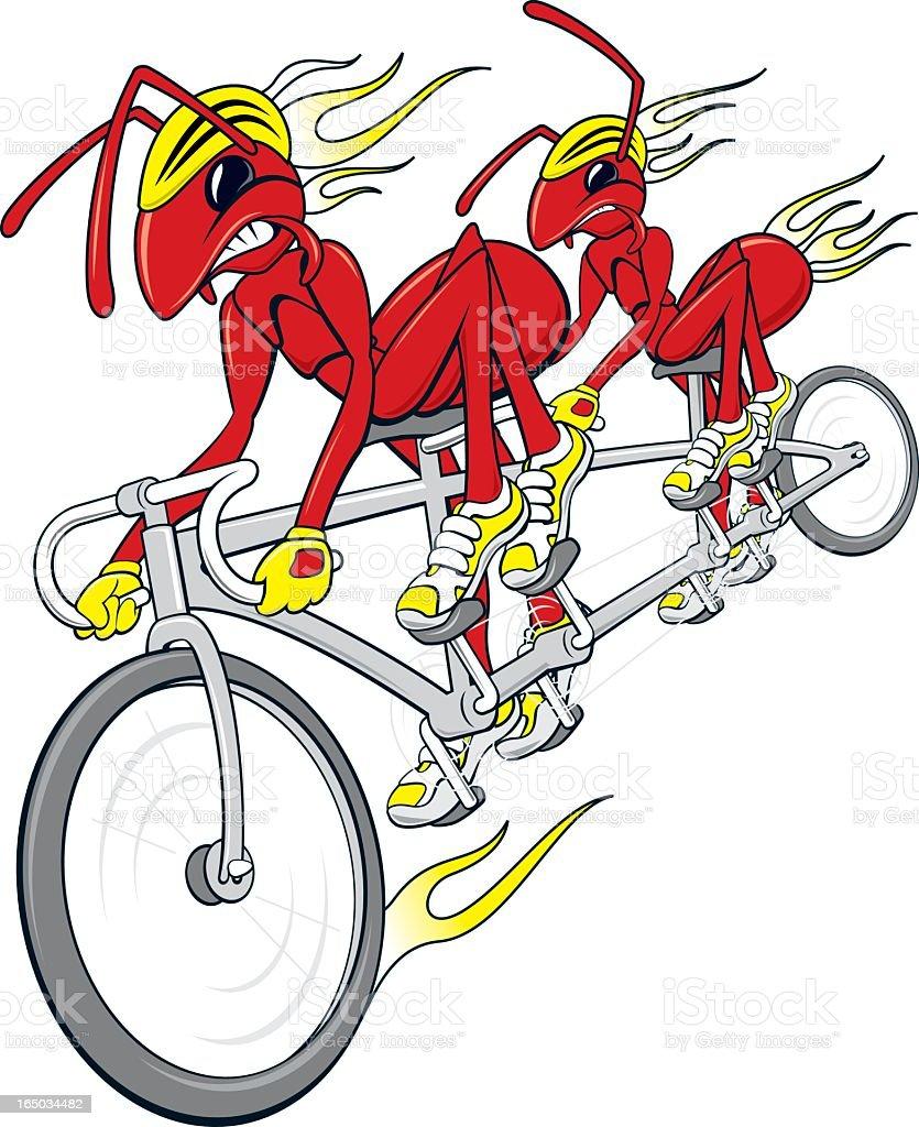 Fire Ants vector art illustration